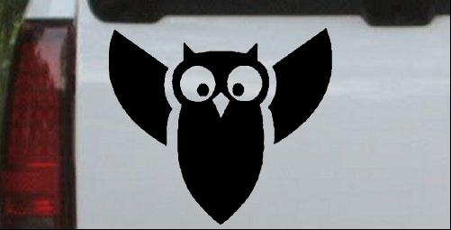 Native American Owl