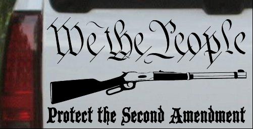 Protect The Second Amendment Anti Gun Control