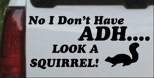 Funny ADHD Look A Squirrel