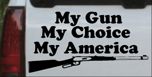 My Gun My Choice My America