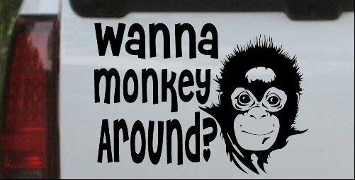 Wanna Monkey Around