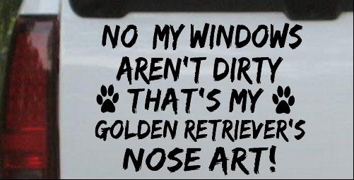 My Windows Arent Dirty