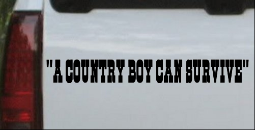 A Country Boy Can Survive Text Car or Truck Window Laptop ...