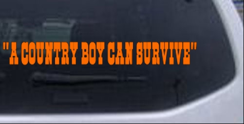 A Country Boy Can Survive Text Car Or Truck Window Laptop Decal - Country boy decals for trucks