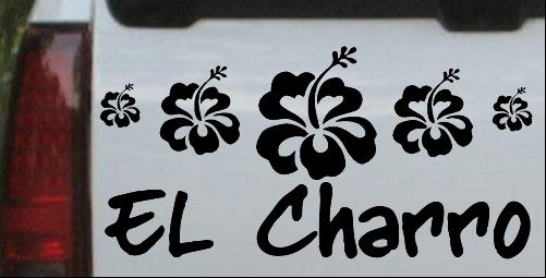 El Charro With Hibiscus Flowers