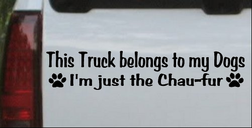 This Truck Belongs To My Dog Im Just The Chaufur