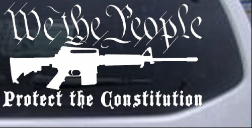We The People Protect The Constitution AR 15 Guns car-window-decals-stickers