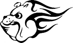 Flaming Georgia Bulldog (Dawg)  Biker car-window-decals-stickers