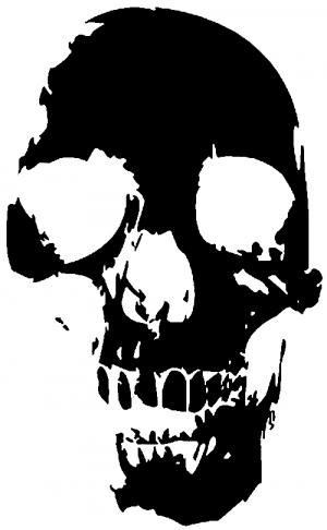 Skull Shadow Decal Skulls car-window-decals-stickers
