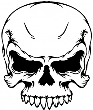 Mean Looking Skull Decal