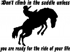 Ride Of Your Life Rodeo Decal Western car-window-decals-stickers