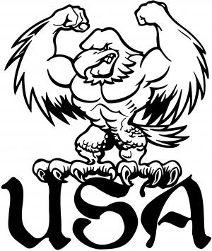 USA Muscle Bald Eagle Decal