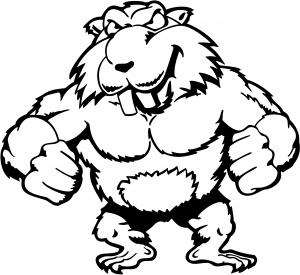 Muscular Beaver Decal Animals car-window-decals-stickers