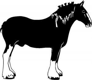 Clydesdale Horse Animals car-window-decals-stickers