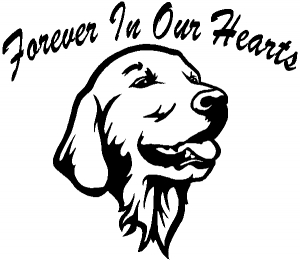 Forever In Our Hearts Golden Retriever