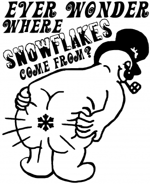 Where Snowflakes Come From
