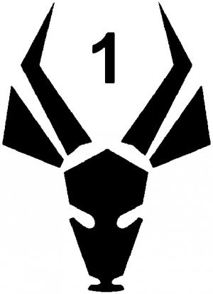 District 9 MNU 1st Reaction Battalion Patch
