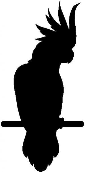 Cockatoo Bird Animals car-window-decals-stickers