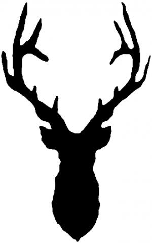 Deer Head Shadow