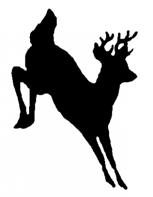Deer shadow jumping (whole body)