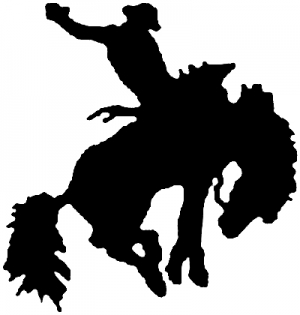 Rodeo Bronco Western car-window-decals-stickers