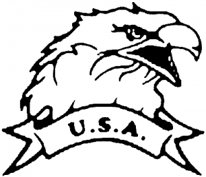 Eagle with USA banner Military car-window-decals-stickers