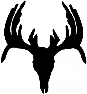 Deer Skull Mount indeginous