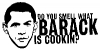 Barack Is Cooking