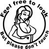 Feel free to look But please dont touch Sexy car-window-decals-stickers