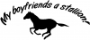 My boyfriends a stallion! Girlie Car Truck Window Wall Laptop Decal Sticker