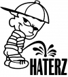 Pee on Haterz Decal