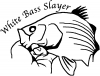 White Bass Slayer Fishing Decal