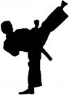 Karate Ninja Decal