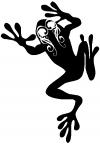 Frog With Swirl Eyes