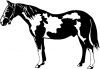 Paint Horse Animals car-window-decals-stickers