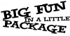 Big Fun in a Little Package Words car-window-decals-stickers