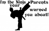 Im The Ninja Your Parents Warned You About