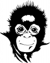 Monkey Animals car-window-decals-stickers