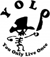 YOLO You Only Live Once Cute Pirate Funny car-window-decals-stickers