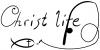 christian Christ Life Fish