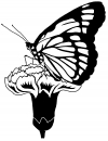 Butterfly On Small Flower Butterflies Car Truck Window Wall Laptop Decal Sticker