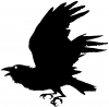 Raven Animals car-window-decals-stickers