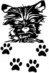Small Dog With Paw Prints Animals car-window-decals-stickers
