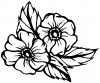 Cherokee Rose Corner Design
