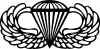 AIRBORNE Wings Military car-window-decals-stickers