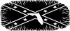 Confederate Rebel Battle Flag Florida