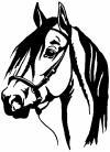 Dark Mane Horse Head Animals car-window-decals-stickers