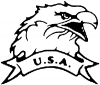 Eagle with USA banner