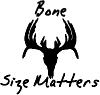 Bone Size Matters Deer Skull