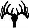 Deer Skull Mount Hunting And Fishing car-window-decals-stickers